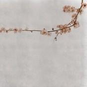Panneau Blossom Branch  Pink Coordonné