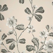 Papier peint Broadwick St Mono Little Greene