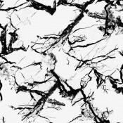 Papier peint Marble White  Coordonné