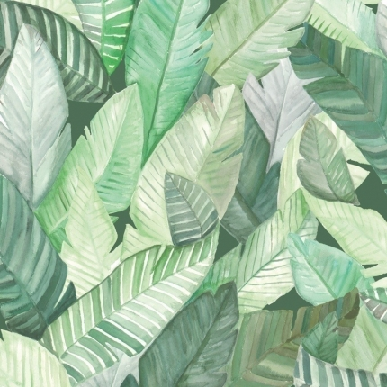 Papier peint Banano Coordonné Verde 5900022 Coordonné