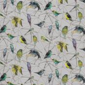 Tissu Aviary Yellow/Soft Grey Osborne and Little