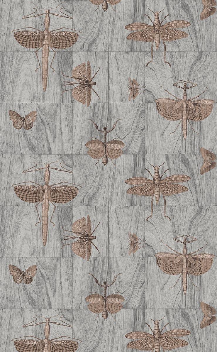 rev tement mural wings arte. Black Bedroom Furniture Sets. Home Design Ideas