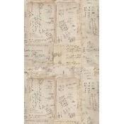 Papier peint Math Taupe/Sepia Mindthegap
