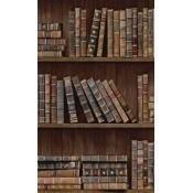 Papier peint Book Shelves Brown/Blue/Red/Green Mindthegap