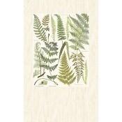 Papier peint Plume Green/Beige/Sand Eijffinger