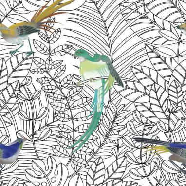 Papier peint Amazone Noir/blanc Nobilis
