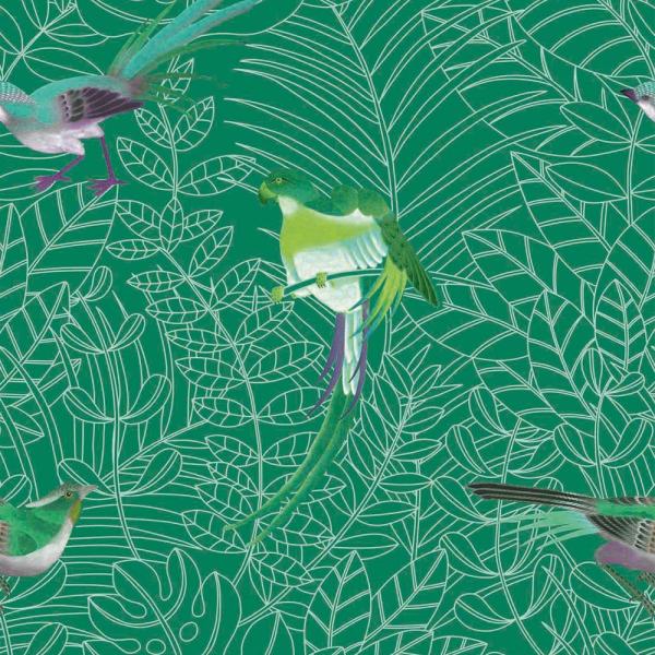 Papier Peint Amazone Nobilis