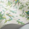Papier peint Hummingbirds Cole and Son