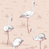 Papier peint Flamingos Rose Cole and Son