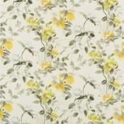 Tissu Lisse  Buttermilk Designers Guild