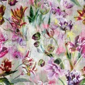 Papier Peint Tulipa Stellata Fuchsia Designers Guild