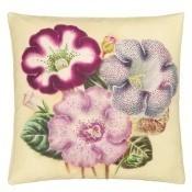 Coussin Varietes De Gloxinia Violet  Violet John Derian by Designers Guild
