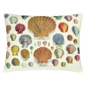 Coussin Captain Thomas Brown's Shells Sepia Multicolore John Derian