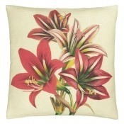 Coussin Amaryllis Carmine Rouge John Derian by Designers Guild