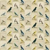 Tissu Bird Collage  Parchment John Derian