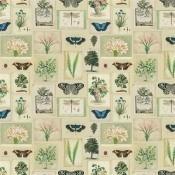 Tissu Flora And Fauna  Parchment John Derian by Designers Guild