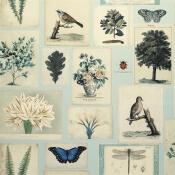 Papier Peint Flora And Fauna Parchment John Derian by Designers Guild