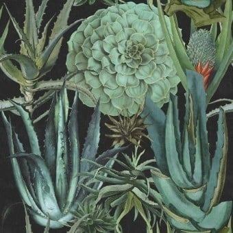 Succulentus Panel Green/Anthracite Mindthegap
