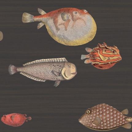 Papier peint Acquario Cole and Son Corail/Brun 97/10048 Cole and Son