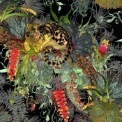 Papier peint Tropical Clouded Leopard  Vanilla Timorous Beasties