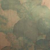Papier peint Nympheas Vert Nobilis