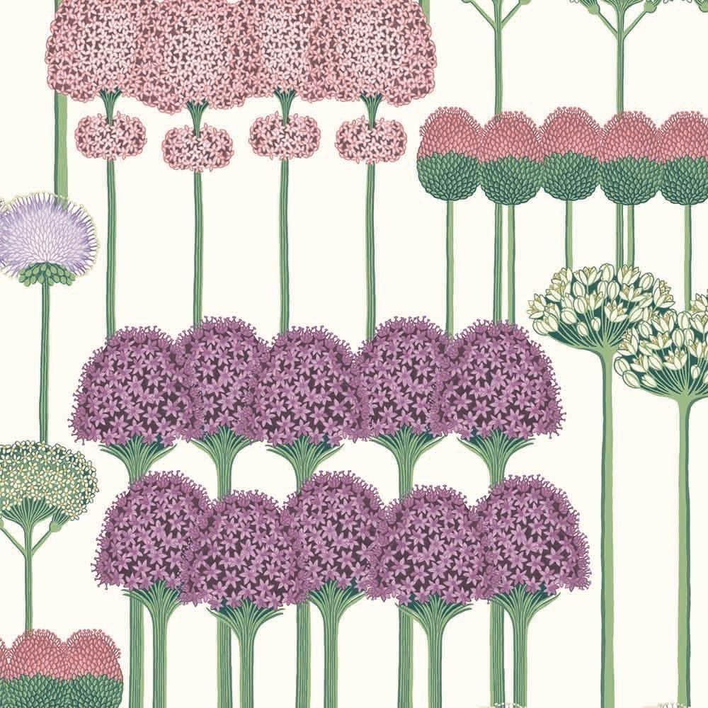 Allium Wallpaper Cole And Son