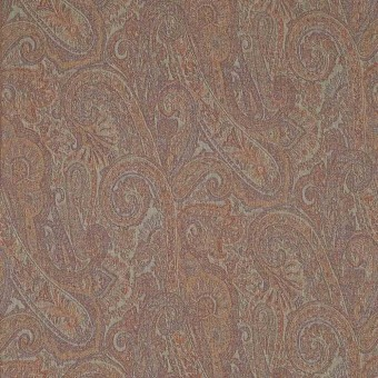Tissu Edessa Multicolor Etro