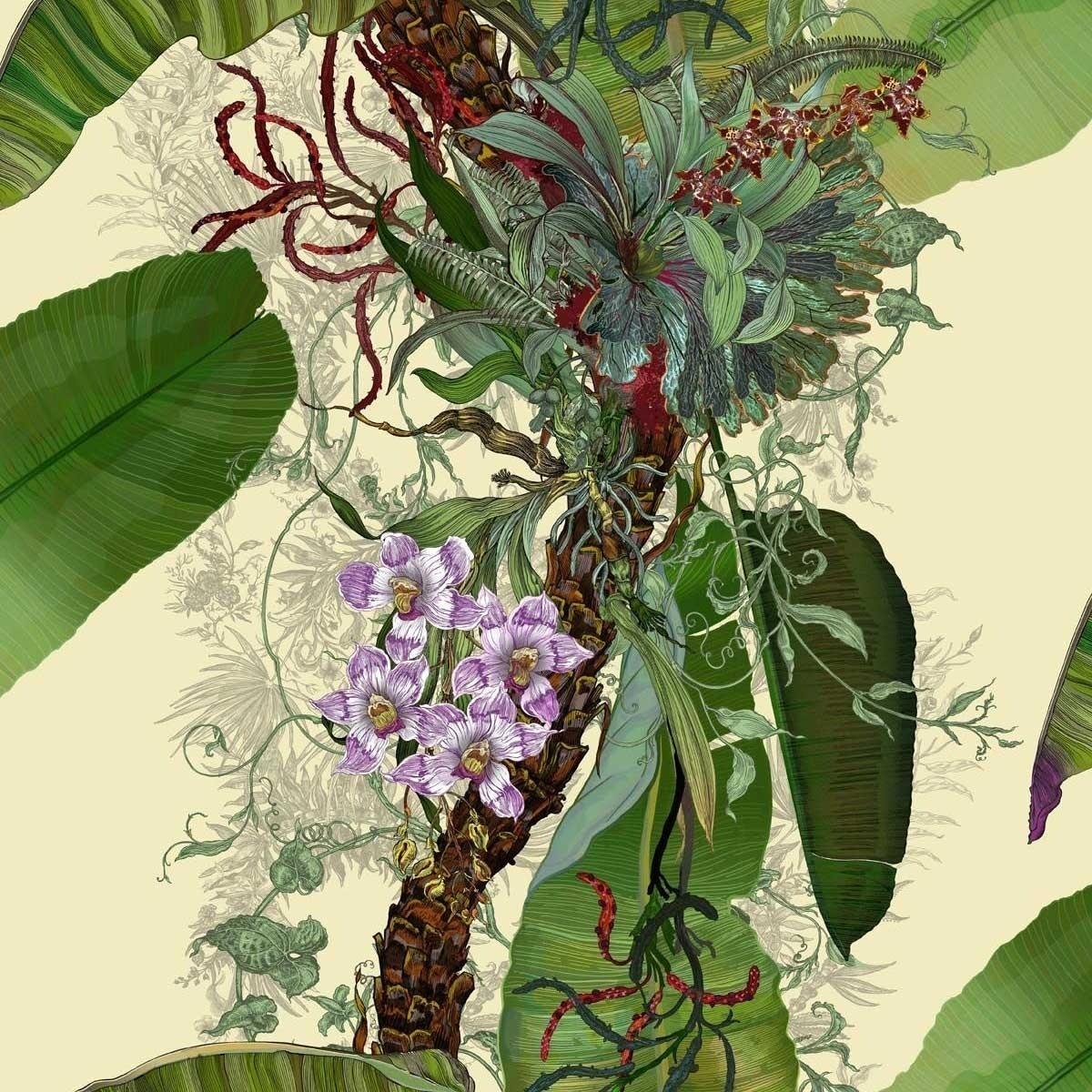 Papier Peint Tropical Tropical Grande Largeur Timorous Beasties