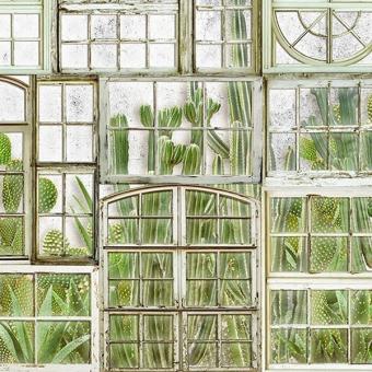 Panneau Window Flora Campo Coordonné