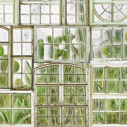 Panneau Window Flora Coordonné Fresh 6800404N Coordonné