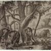 Panneau Elephants Coordonné