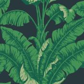 papier peint La Havane Sarcelle Nobilis