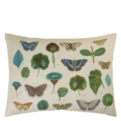 Coussin A Leaf And Butterfly Study  Linen John Derian