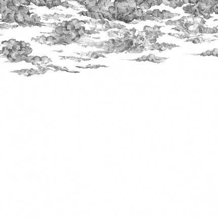 Panneau Cotton Skies Rebel Walls Black R14511 Rebel Walls