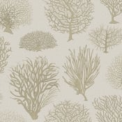 Papier peint Seafern Charcoal Black Cole and Son