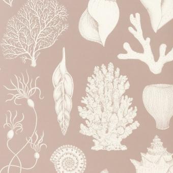 Shells Wallpaper Aqua Ferm Living