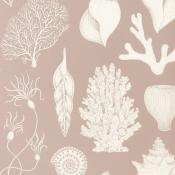 Papier peint Shells  Aqua Ferm Living