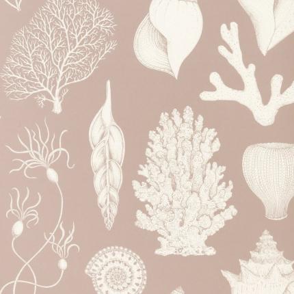 Papier peint Shells Ferm Living Dusty Rose 100236303 Ferm Living