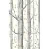 Papier peint Woods and Stars Cole and Son