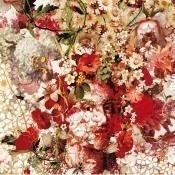 Papier peint Celebration Multico Jean Paul Gaultier