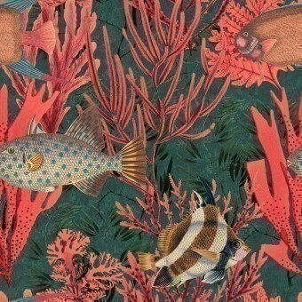 The Undersea Panel Coral Mindthegap
