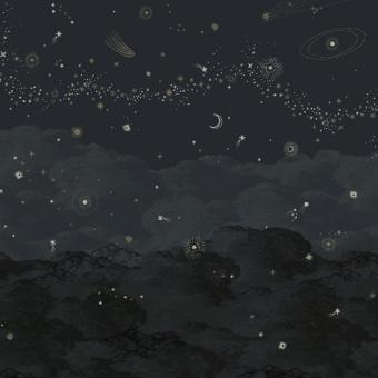Panneau Cosmos Nuit 150x330 cm - 3 lés - côté droit Isidore Leroy