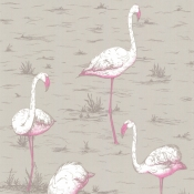 Papier peint Flamingos Grège Cole and Son