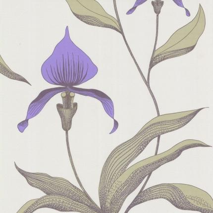 Papier peint Orchid Cole and Son Améthyste 66/4024 Cole and Son
