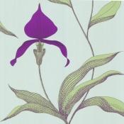 Papier peint Orchid Améthyste Cole and Son