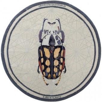 Tapis Amaurodes Chernobilis Navy Nodus