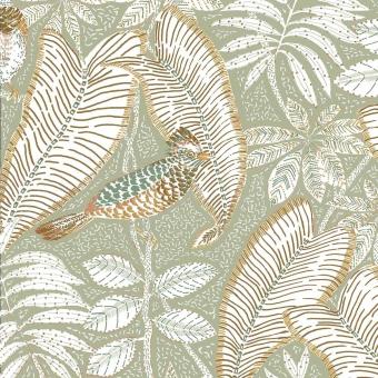 Sibia Wallpaper Amande Casamance