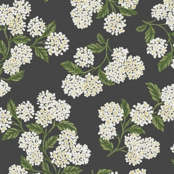 Papier peint Hydrangea Black/White Rifle Paper Co.