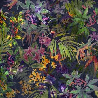 Rainforest Panel Black Code