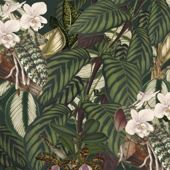 Orchid Bloom Fabric Brown/Green/Taupe Mindthegap